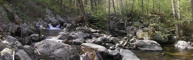 small stream fishing